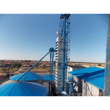 Cheap Price SNH-10 Series Soybean Dryer for Industry