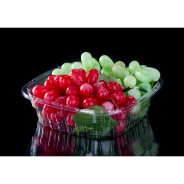Salad Blueberry fruit box