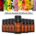 Natural Rose Essential Oils Skin Care Aroma Oil Lavender Mint Chamomile Tea Tree Oil Fragrance Essence Treatments Body Massage