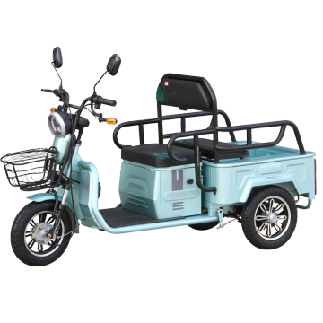 Elderly recreational passenger electric scooter