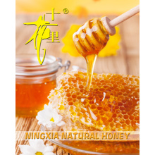 Wholesale sweet honey low price