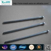 Iron Common Nails Anping Factory Brad Nail
