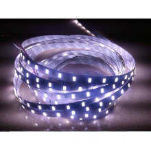 SMD5630 LED Strip Light DC12V White Warm White Color