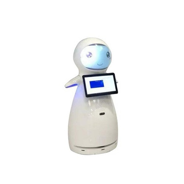 Interactive Talking Hotel Welcome Robots