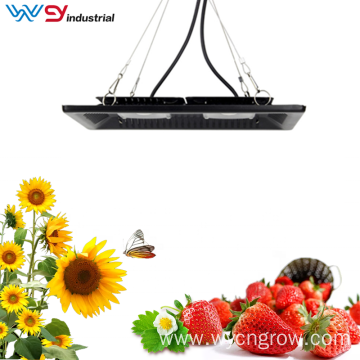 50W cob grow lights for indoor plants hydroponic