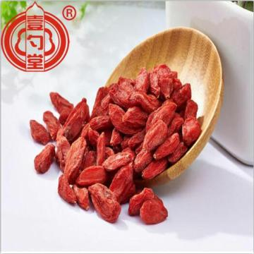 Dietary Dried Red Berries Ningxia Goji Berry