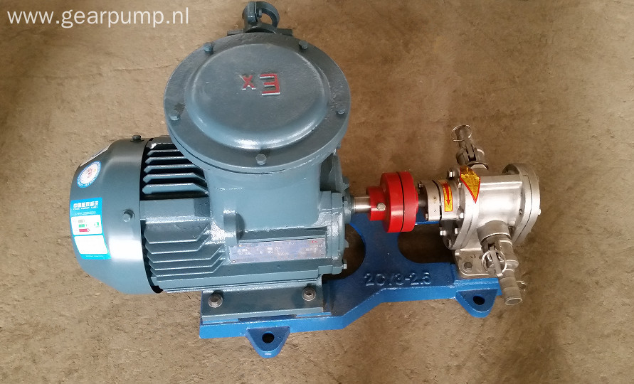 2CY gear lube oil transfer pump