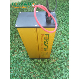 12V60Ah LFP Lithium Ion Battery