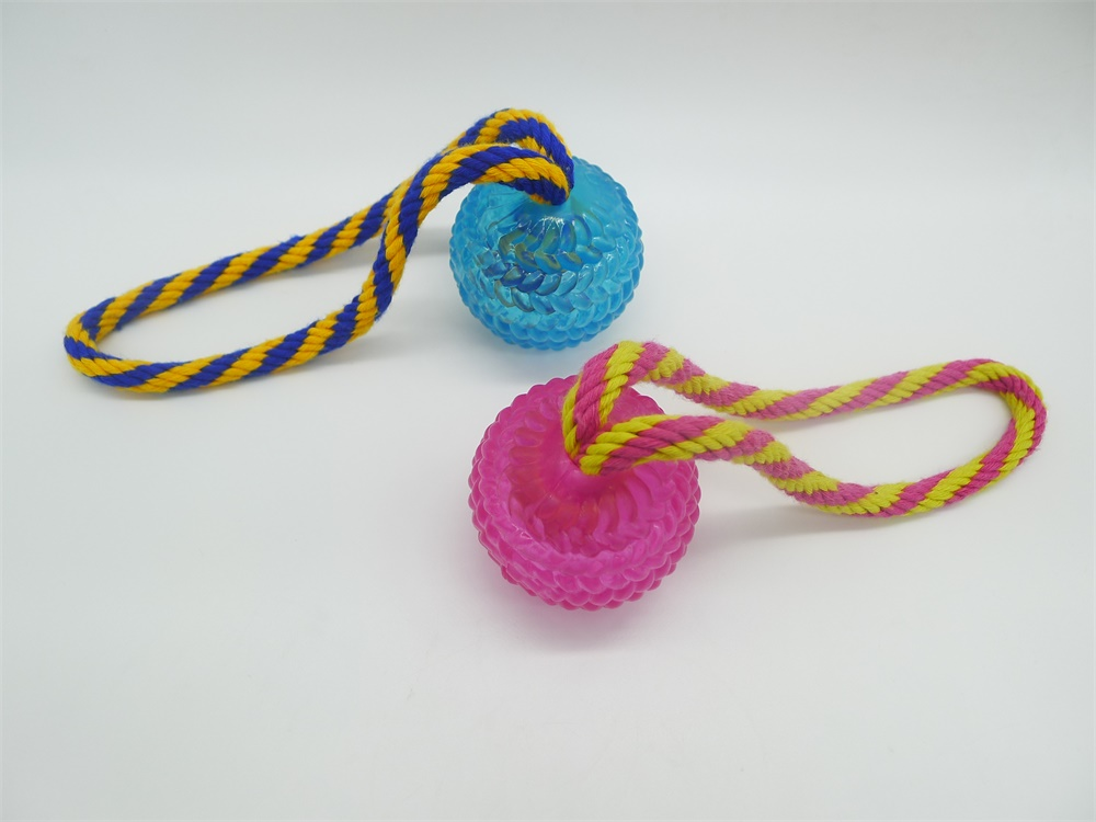 TPR Ball with Rope