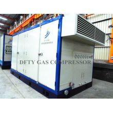High Performance CNG Compressor
