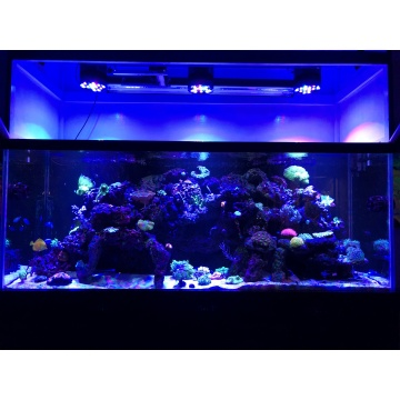 Phlizon Led Aquarium Light Hochwertige Leistung 2020