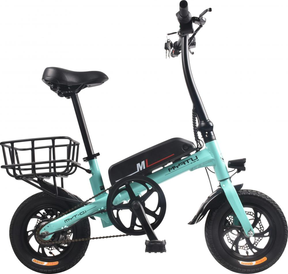 Electric Fat Folding Bike