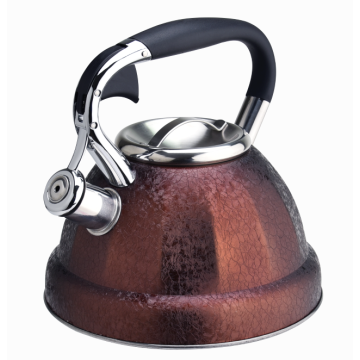 Durable stainless steel stovetop teakettle colorful