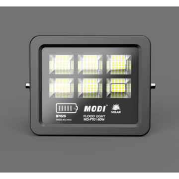 Solar flood light with motion sensor