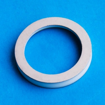 High Precision Metallized Aluminum Oxide Ceramic Ring
