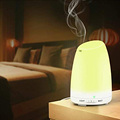 Amazon Travel Evaporative Humidifier Air Purifier