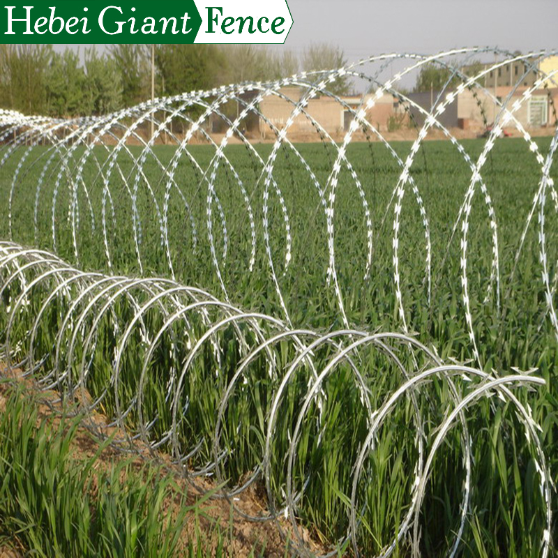 High Security BTO-22 Razor Barbed Wire on Top