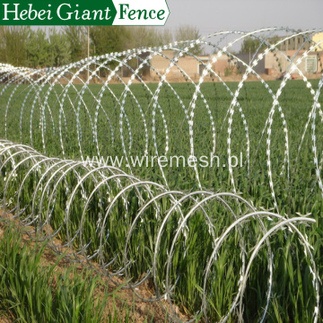 Hot Dipped Security Fencing Razor Barbed Wire Fence