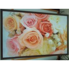 Infrared Heating Panel for Home Appliance
