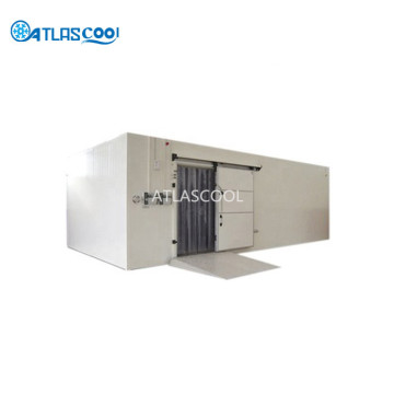 Large industrial refrigerated warehouse cold room