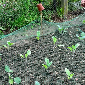 Bird Net Effective Trap Hunting Sensitive Quail Trapping Garden Supplies Pest Control Green Mesh Net Crop Seed Vegetables Care