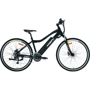 Eco Electric Bike Mid Drive Ebike