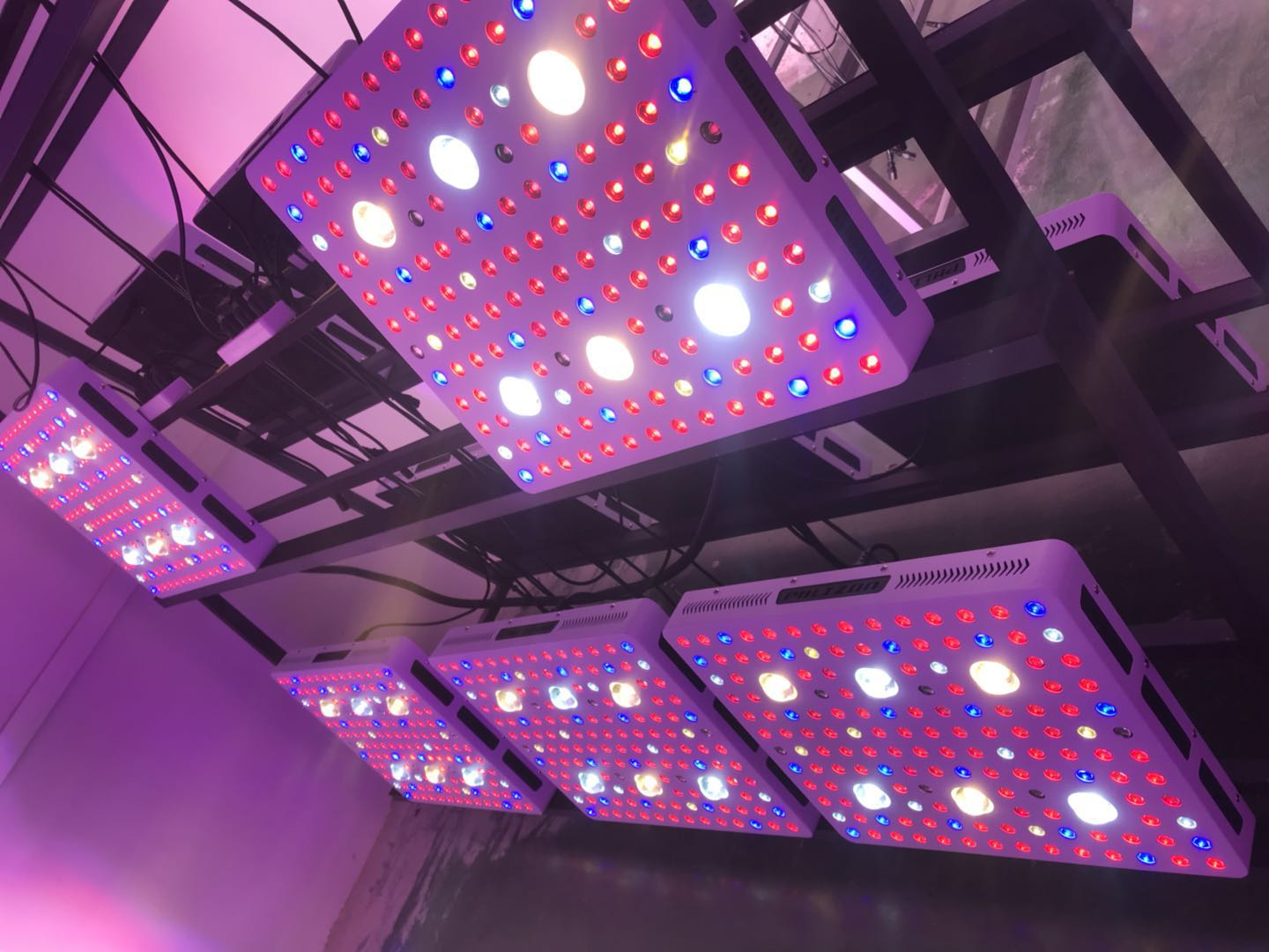 LED Grow Light Phlizon