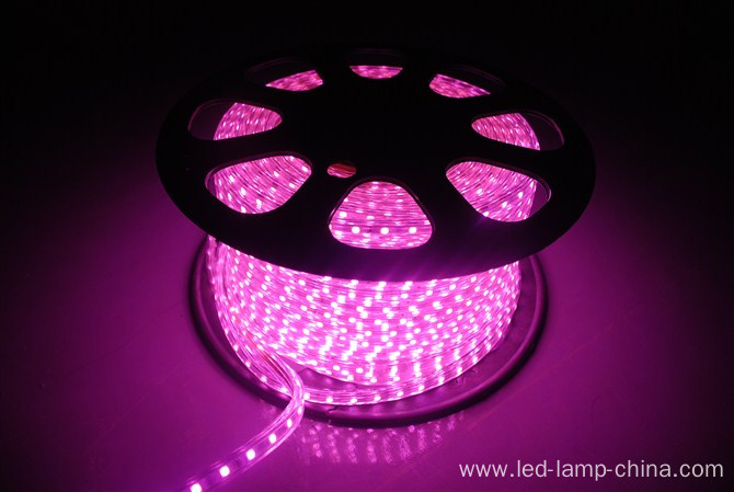 AC 220V flexible 5050 led strip