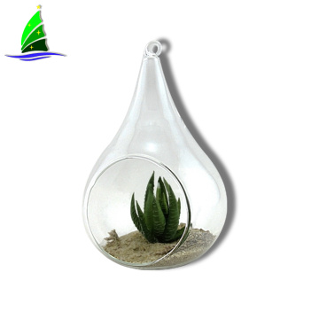 Glass Hanging Planter Hanging Air Plant Terrarium Decorative