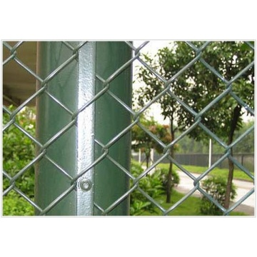 PVC Coated Chain Link Fence factory Anping