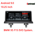 Display per cruscotto BMW X5 F15