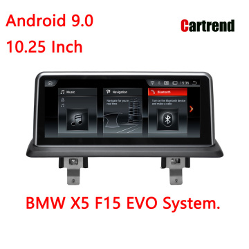 BMW X5 F15 Dashboard Display