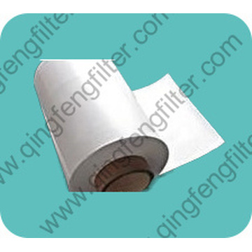 Hydrophobic PTFE Membrane with PP Filter Media