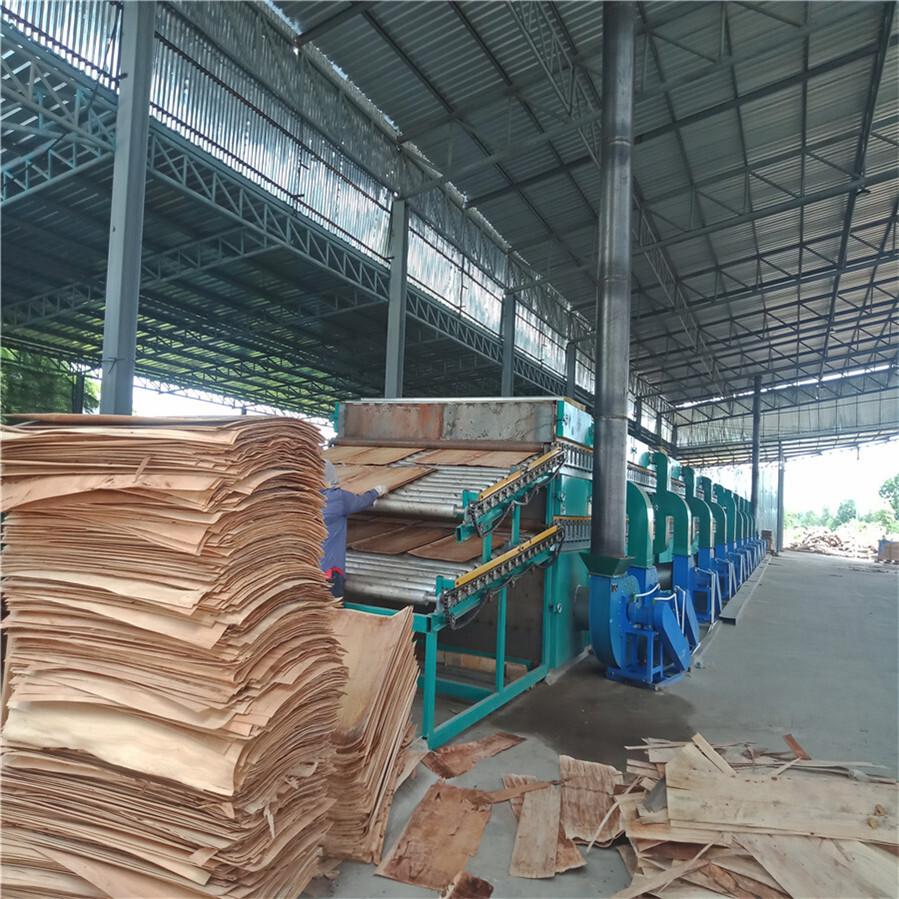 木材单板带