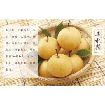 China new crop fengshui pears