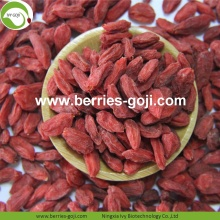 Factory Supply Natural Healthy Lose Weight Goji