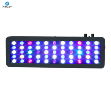 Lulu Ata Umi 165W Aquarium Light for Aquatic