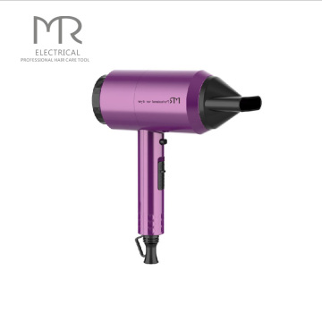 Professional Electric Hair Dryer Salon Hotel Hair Dryer 2200 Hair Dryer