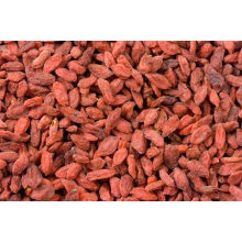 Authentic ningxia goji berry