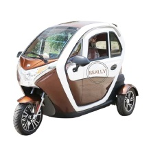 Fully Enclosed Electric Adult Tricycle Three Wheels Passenger Vehicles Tuk Tuk Car with Lithium Battery Custom Logo