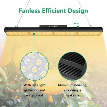 spectrum king tomatoes plant led grow lighting
