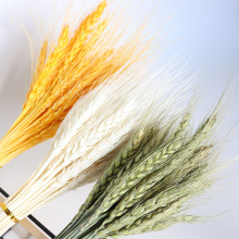 50Pcs Grain Wheat Ears Natural Dried Flowers Wheat Bedroom Living Room Decoration Bouquet Decoration Shooting Props
