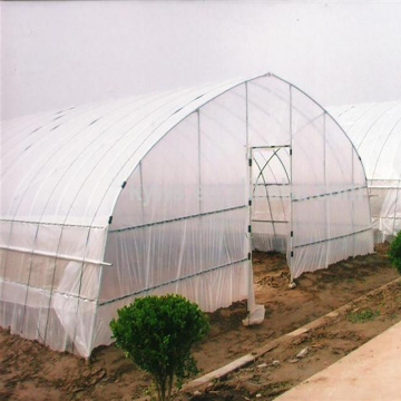 Easy Installation agriculture PE Film Greenhouse