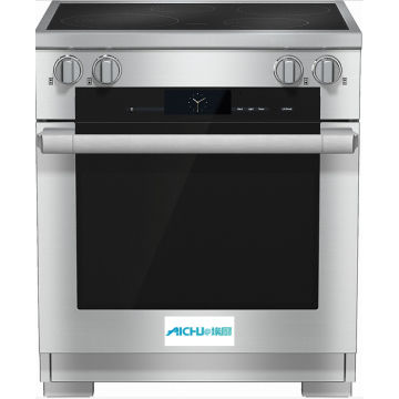 30 Inch Range Built-in Electric Oven