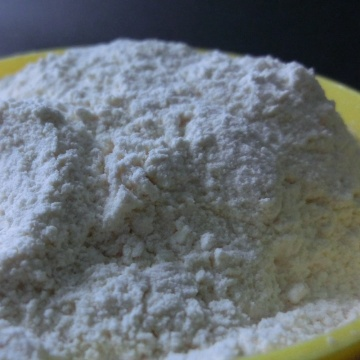 New Crop Garlic Powder 100%pure powder
