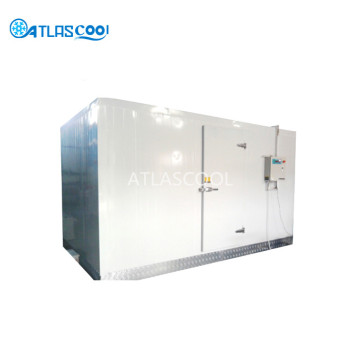 Deep Freezer Cold Storage Room