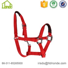 Headcollar horse riding horse halter