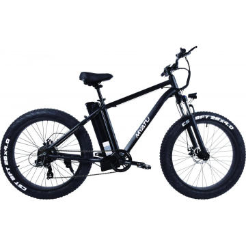 Light Weight Alloy Mountain Snow Fat E Bicycle