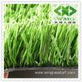Basketball Court Grass