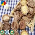 Dried  Lentinula Edodes With High Nutritional Value